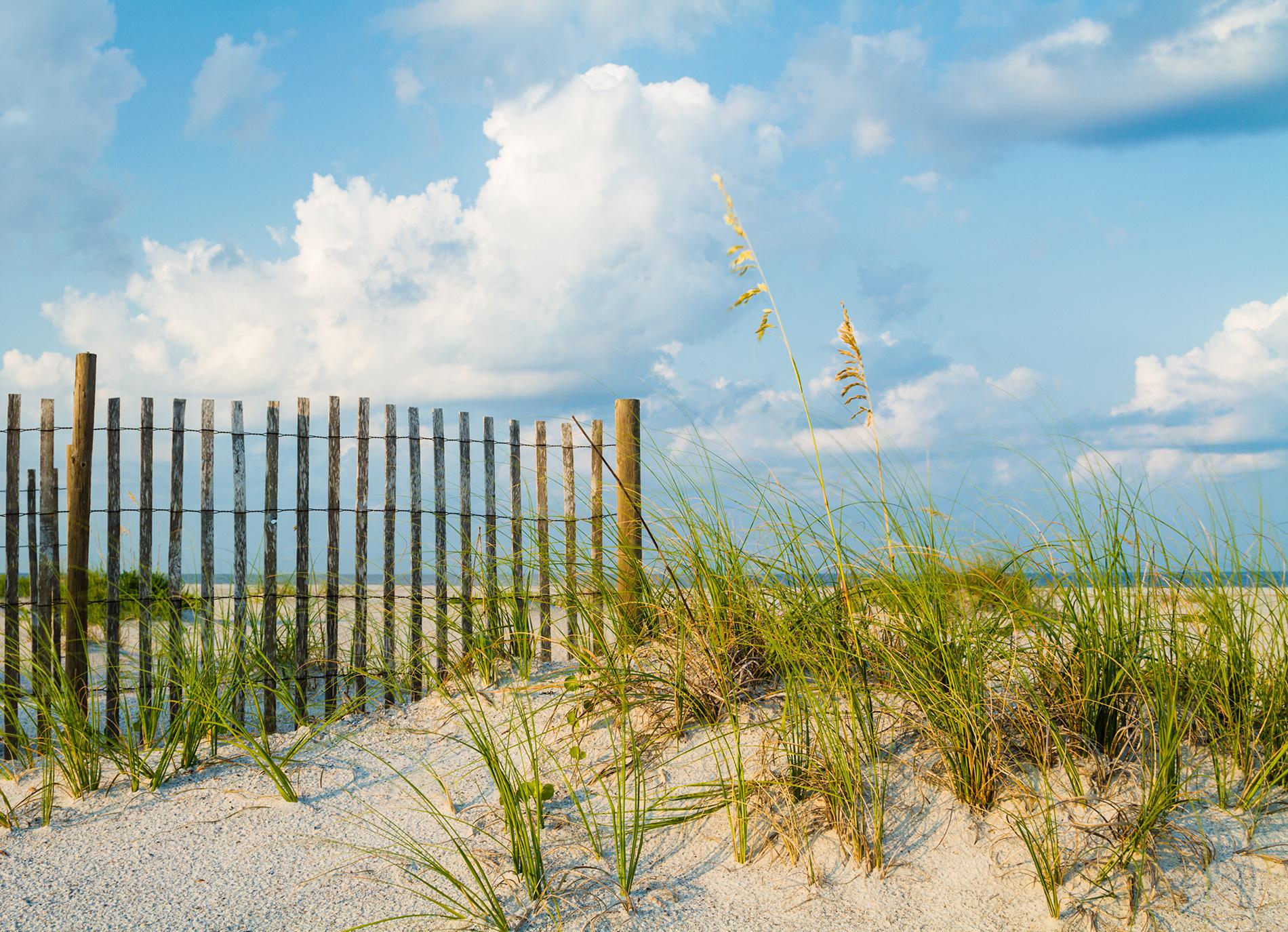 Skyline - amelia dunes fl