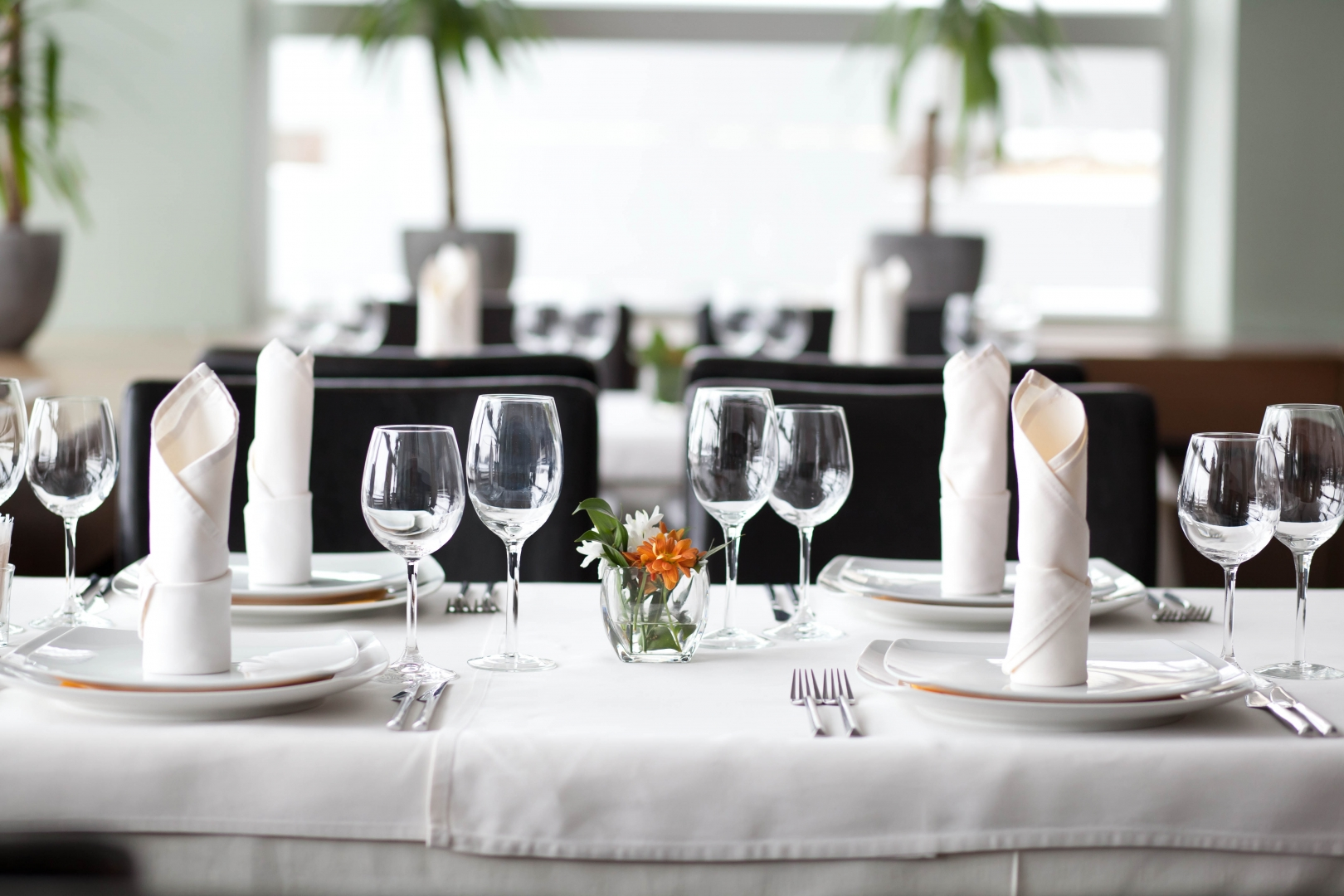 table side image of place settings at a fine dining restaurant