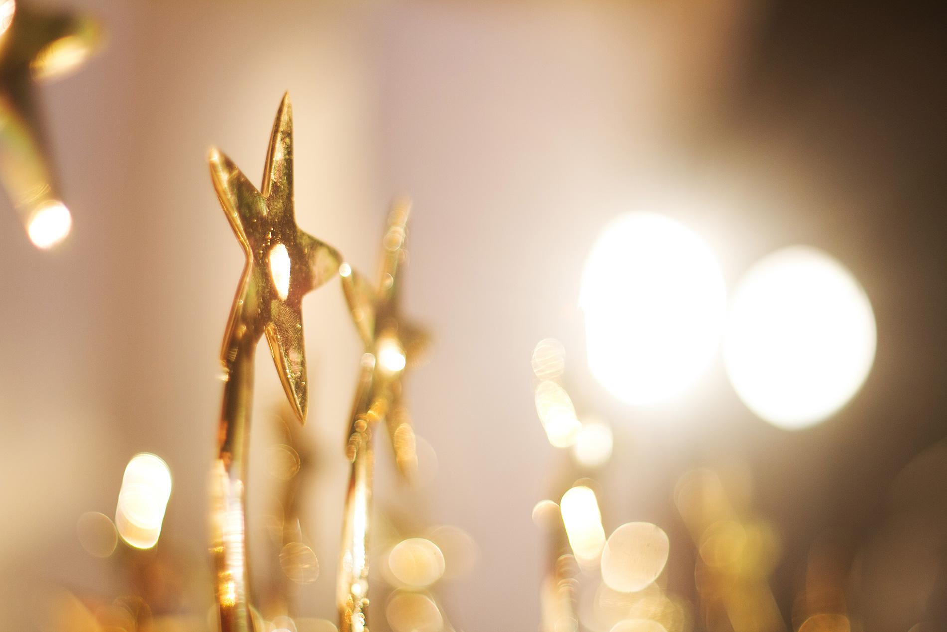 LSMx wins Gold Stevie Award