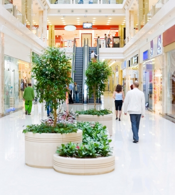 Mall-the-new-four-letter-word